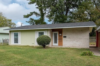 7424 Oakmont Drive, Norfolk, VA 23513 - #: 10286125