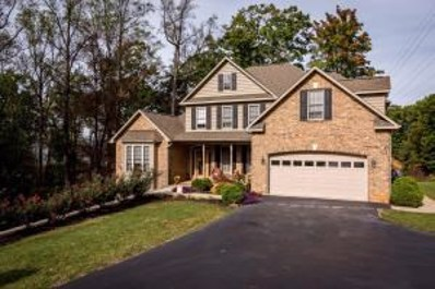 259 Post Oak Dr, Roanoke, VA 24019 - #: 847521