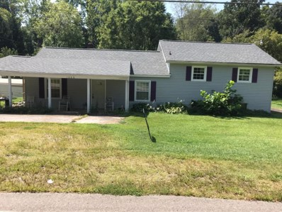 1086 Daniels Creek Rd, Collinsville, VA 24078 - #: 851891