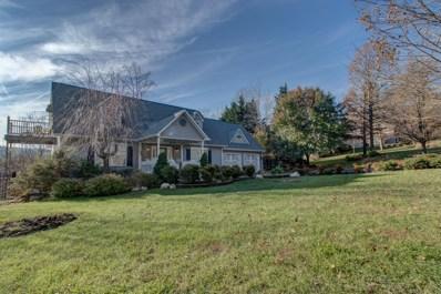 520 Green Level Rd, Boones Mill, VA 24065 - #: 855675