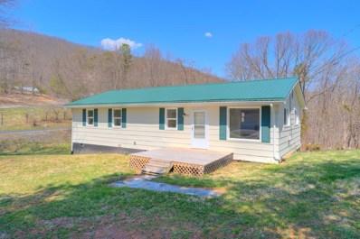6461 Parrott Mountain Rd, Parrott, VA 24132 - #: 857952