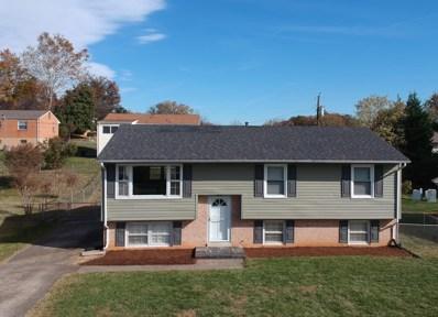 922 Dominion Ln, Salem, VA 24153 - #: 864799