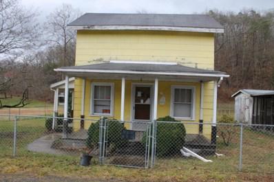 9711 Rich Patch Rd, Covington, VA 24426 - #: 865600