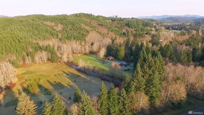 1351 State Route 4, Naselle, WA 98638 - #: 1234987