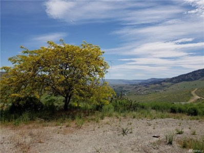 56 Buckhorn Mountain Rd, Pateros, WA 98846 - #: 1311865