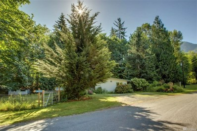46025 SE Edgewick Rd, North Bend, WA 98045 - #: 1344937