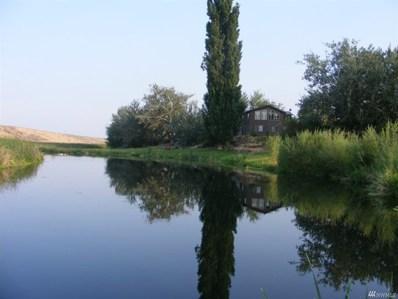 14751 NE RD B.5, Soap Lake, WA 98851 - #: 1354770