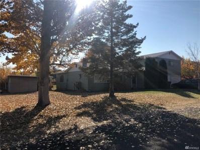 219 Warden Ave NW, Soap Lake, WA 98851 - #: 1374811