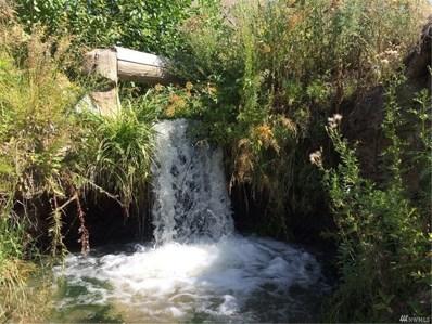 41 French Creek Rd, Methow, WA 98846 - #: 1384872