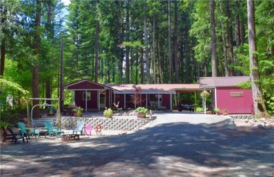 199 Mountain View Dr, Packwood, WA 98361 - #: 1392782