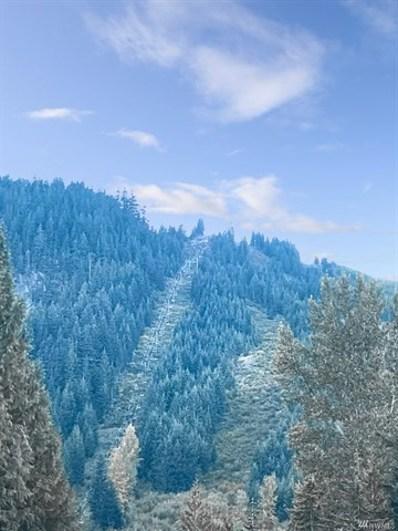 440 Hyak Dr E, Snoqualmie Pass, WA 98068 - #: 1417639
