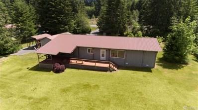 411 Mineral Creek Rd, Mineral, WA 98355 - #: 1442019