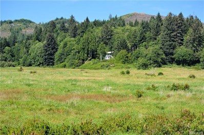 31 Seal River Road, Rosburg, WA 98643 - #: 1494023