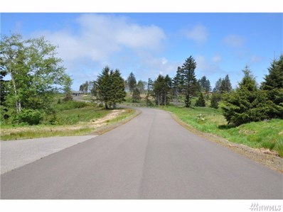 3007 Lighthouse Keepers Rd, Ilwaco, WA 98624 - #: 919443