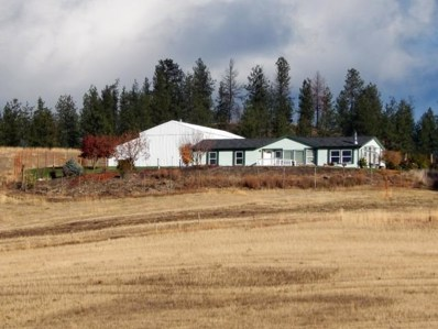 939 Hockersmith, Kettle Falls, WA 99141 - #: 201826717