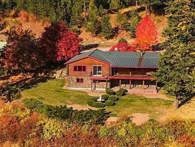 18918 N Green Mountain, Newman Lake, WA 99025 - #: 201826792
