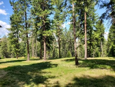 Lot F Marcus Campground, Marcus, WA 99151 - #: 202112002