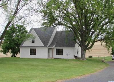 8502 Green Hollow Road, Colfax, WA 99111 - #: 237381