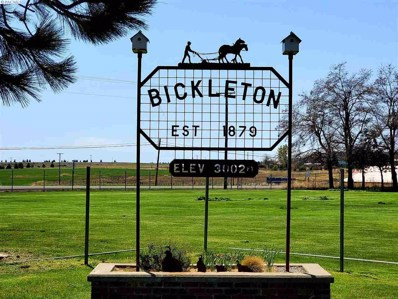 Tbd Naught Road, Bickelton, WA 99322 - #: 245380