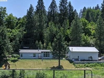 110 S River Road, Palouse, WA 99161 - #: 246811