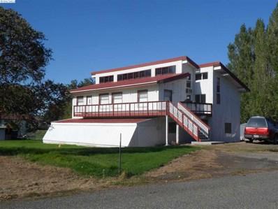 401 Loen Drive, Mesa, WA 99343 - #: 249917