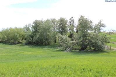 Tbd Butte Farm Road, Steptoe, WA 99174 - #: 253904