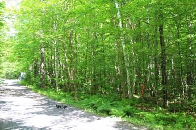 Lot 40 Alpine Drive, Upson, WI 54565 - #: 1535133