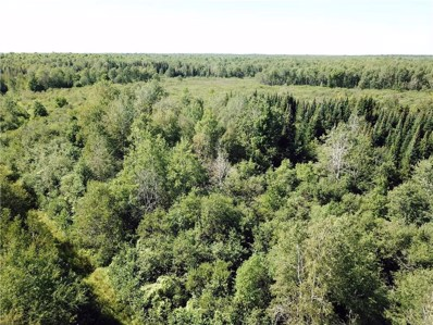 40 Acres Via Easement Off Cty. Rd. B, Glen Flora, WI 54526 - #: 1543240