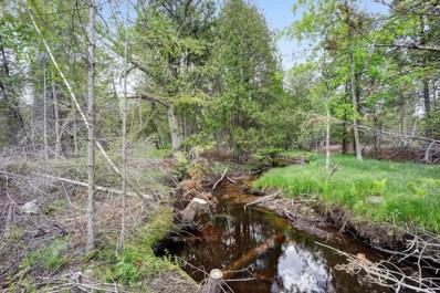 N7160 State Hwy M-35, Cedar River, MI 49887 - #: 1723811