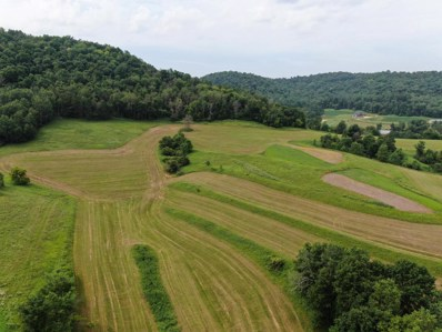 Lot 2 Viking St, Coon Valley, WI 54623 - #: 1750729