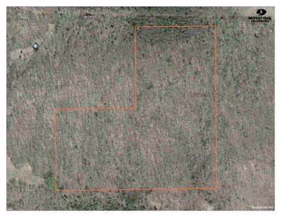30 Ac W Center Dr, Hurley, WI 54534 - #: 1824292
