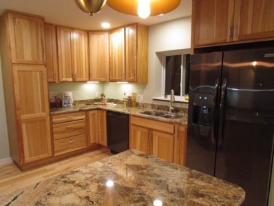 219 Schley Pass, Madison, WI 53703 - #: 1843422