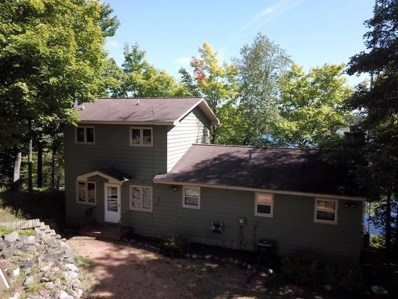 8100 Bow Rd, Presque Isle, WI 54557 - #: 1867833