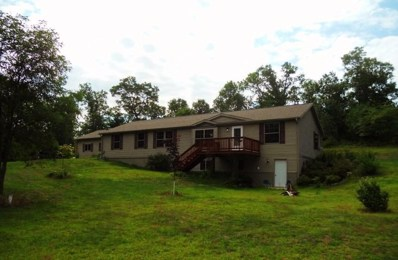 919 Gale Dr, Wisconsin Dells, WI 53965 - #: 1869184