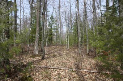 Lot 9 On American Eagle Ct, Lake Tomahawk, WI 54539 - #: 1880278