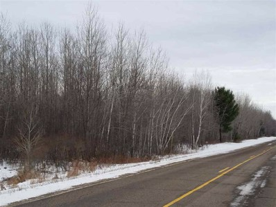 On County Road S, Irma, WI 54442 - #: 21807926