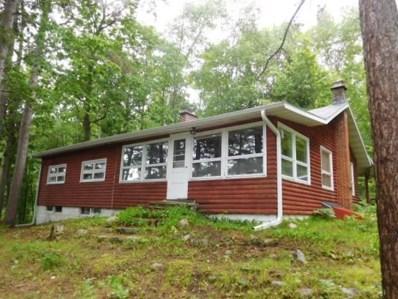 N9230 North Shore Road, Summit Lake, WI 54485 - #: 21808940