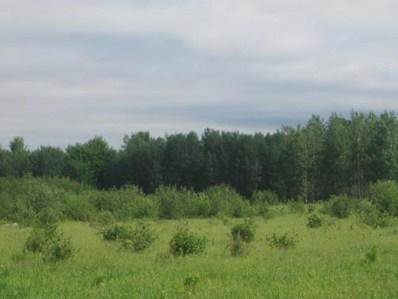 77.5 A County Road S, Milladore, WI 54454 - #: 22002943