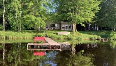 10294 E Tree Lake Road, Rosholt, WI 54473 - #: 22003039