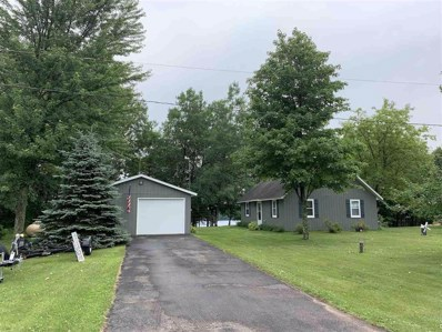 10120 W Tree Lake Road, Rosholt, WI 54473 - #: 22003334
