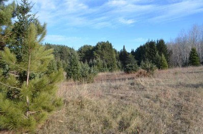 0 Red Hickory Road, Wittenberg, WI 54432 - #: 22006767