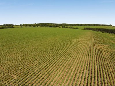 89AC 200th Ave, Deer Park, WI 54007 - #: 4852447