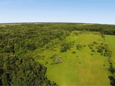 70AC 200th Ave, Deer Park, WI 54007 - #: 4852454