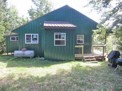 10101 Newald Road, Fence, WI 54120 - #: 50192176