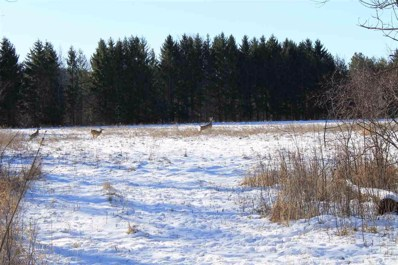 Blueberry Lane, Waldo, WI 53093 - #: 50228037