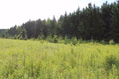 Blueberry Lane, Waldo, WI 53093 - #: 50228043