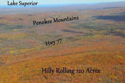 120 Acres Hwy 77, Upson, WI 54565 - #: 897217