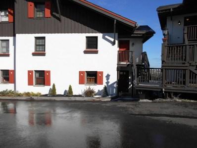 1 Snowshoe Drive, Snowshoe, WV 26209 - #: 17-1906