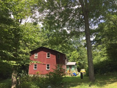 119 Forest Run Rd, Union, WV 24983 - #: 18-1101