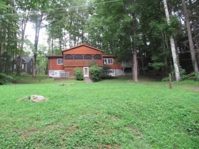 163 Campsite Road, Mt. Nebo, WV 26679 - #: 18-1122